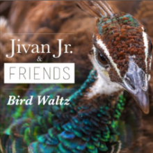 Jivan Jr. & Friends - Bird Walts